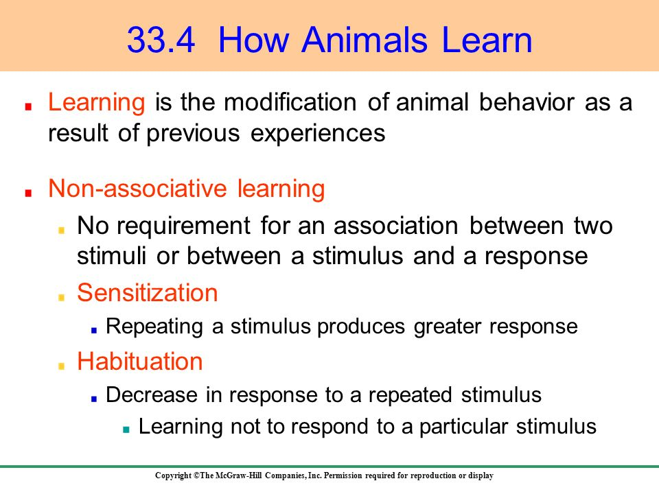 An analysis of associative learning in animals