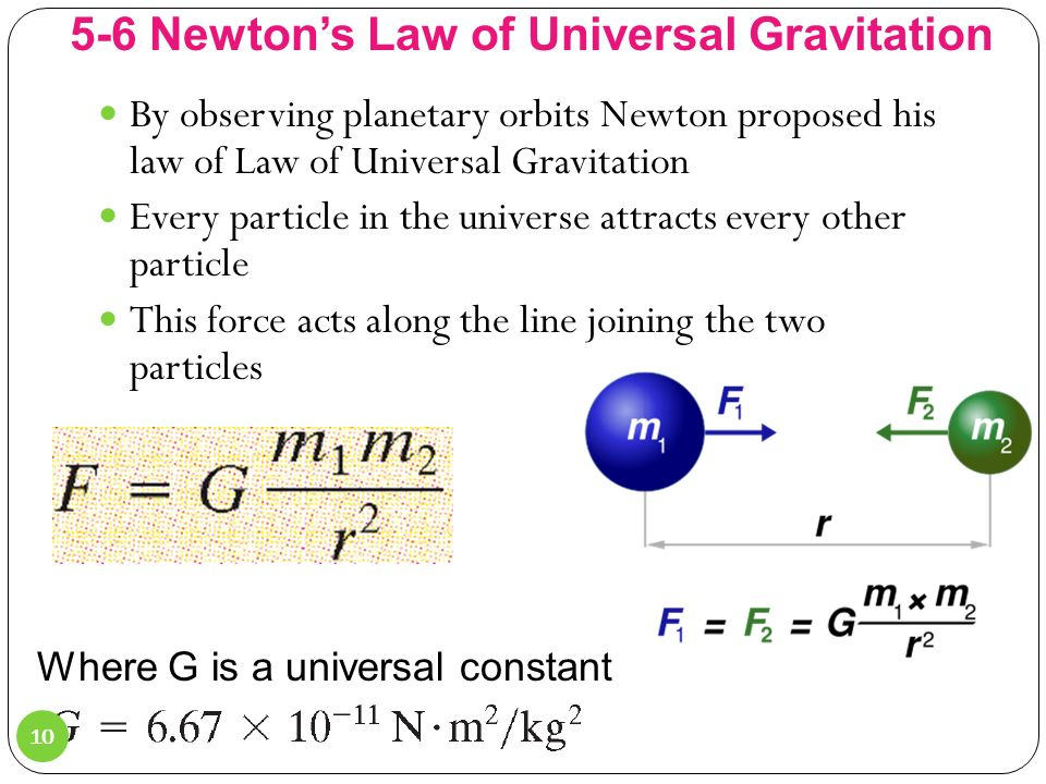 Physics Albert Einstein Theory of Relativity WSM in