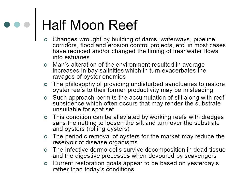 Half Moon Reef