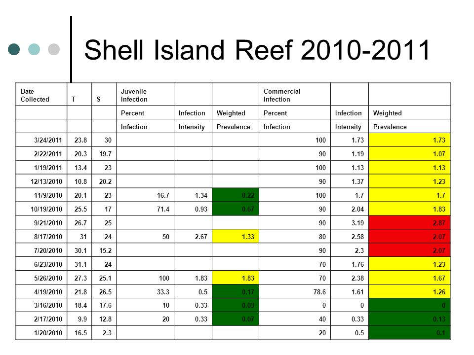 Shell Island Reef 2010-2011 Date Collected T S Juvenile Infection