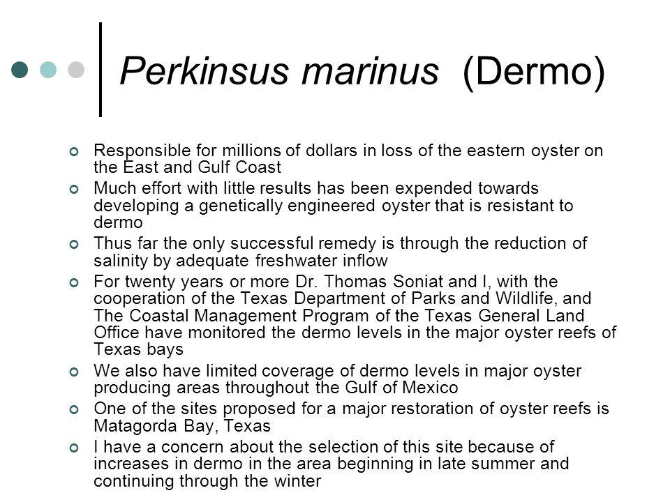 Perkinsus marinus (Dermo)