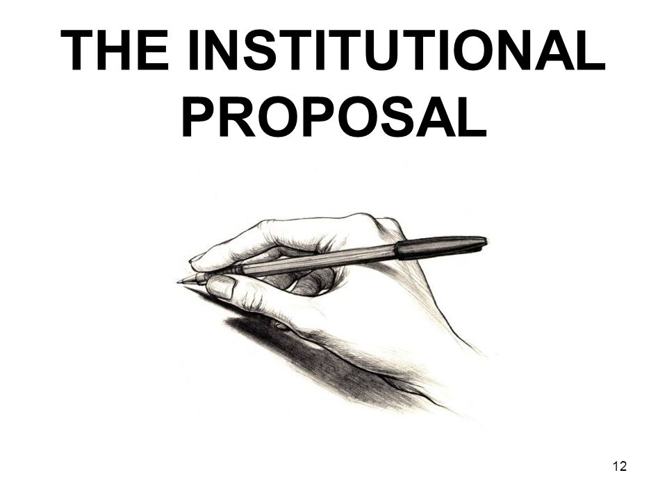 THE INSTITUTIONAL PROPOSAL