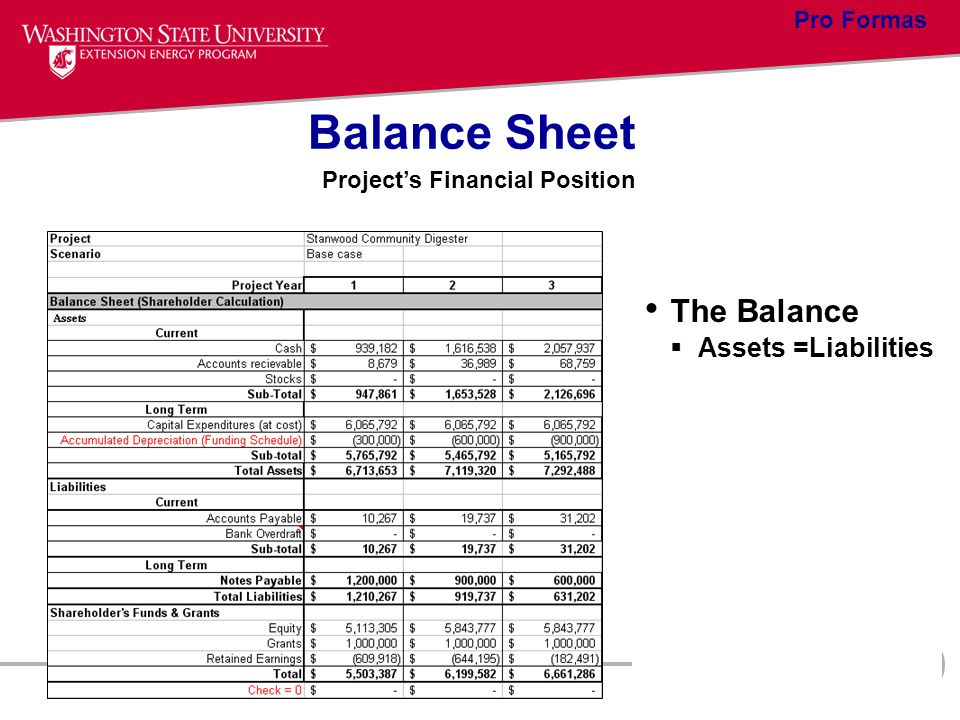 Balance Sheet The Balance Assets =Liabilities Pro Formas