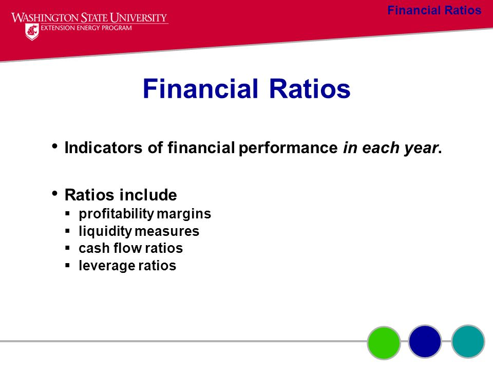 Financial Ratios Indicators of financial performance in each year.