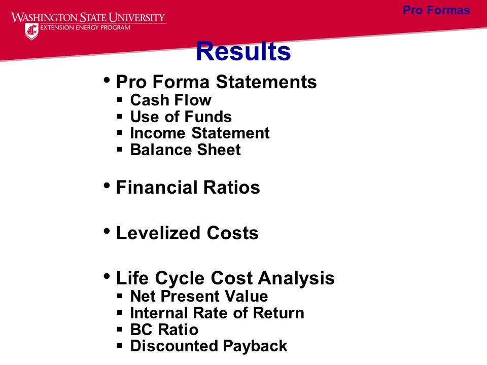 Results Pro Forma Statements Financial Ratios Levelized Costs