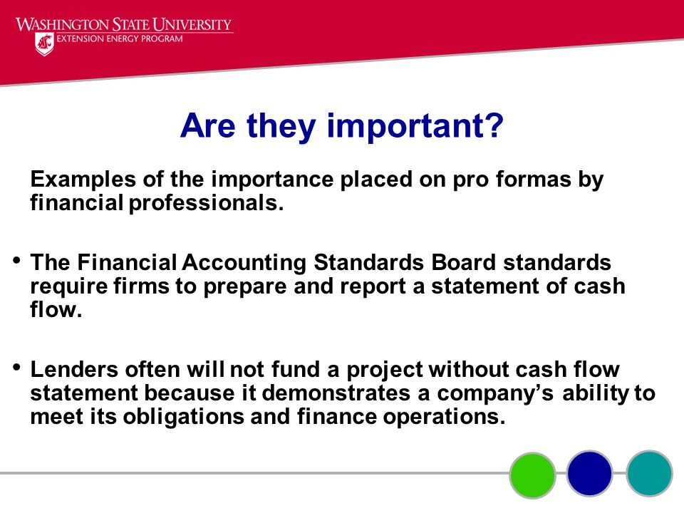 Are they important Examples of the importance placed on pro formas by financial professionals.