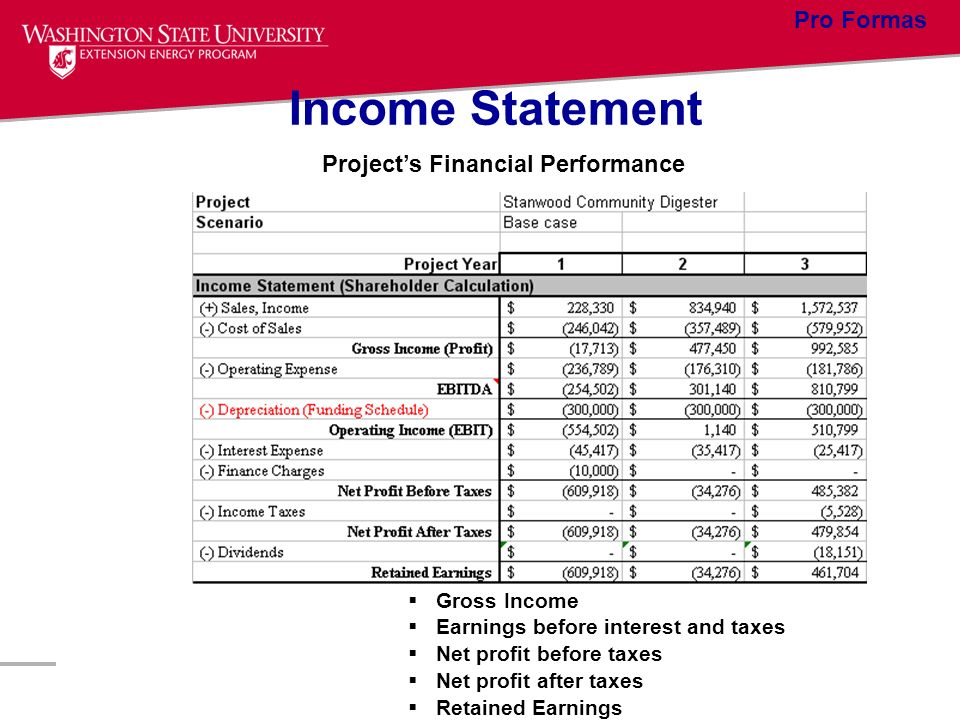 Income Statement Pro Formas Project's Financial Performance