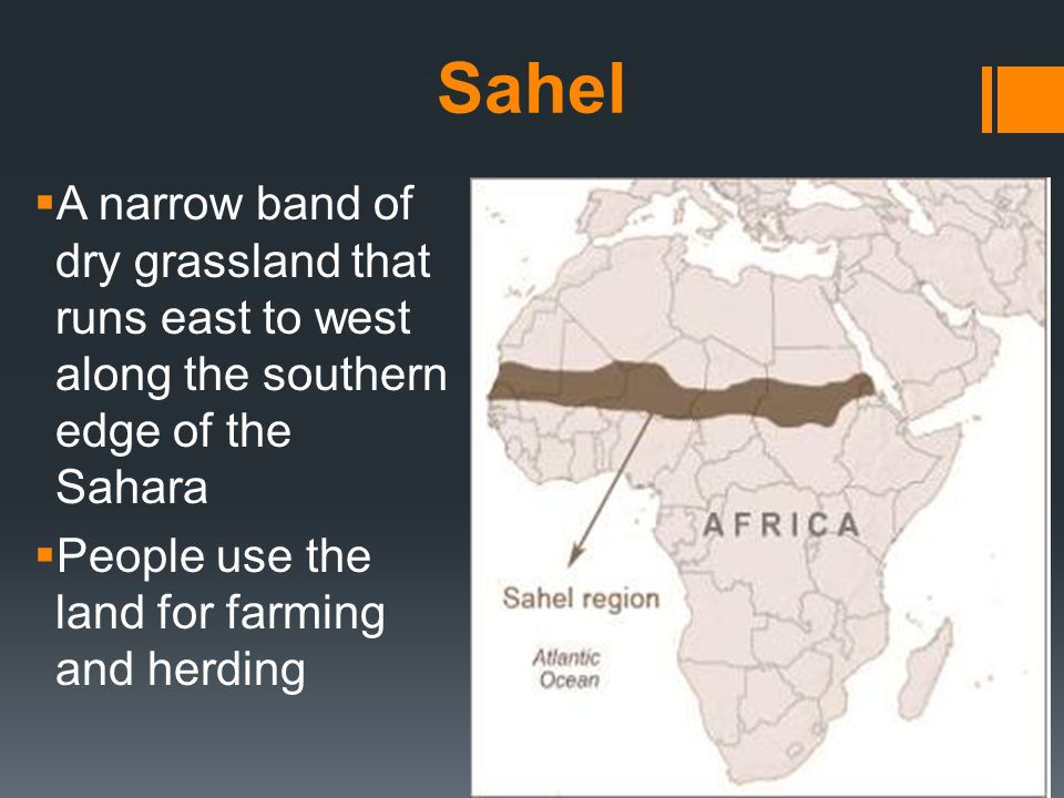 Sahel A narrow band of dry grassland that runs east to west along the southern edge of the Sahara.