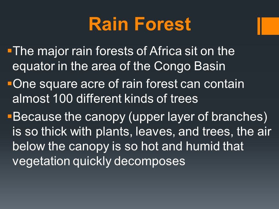 Rain Forest The major rain forests of Africa sit on the equator in the area of the Congo Basin.