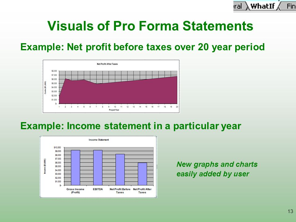 Visuals of Pro Forma Statements