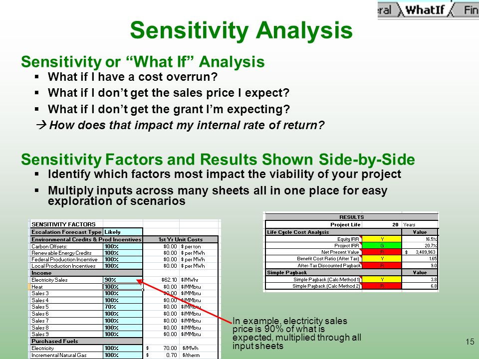Sensitivity Analysis Sensitivity or What If Analysis