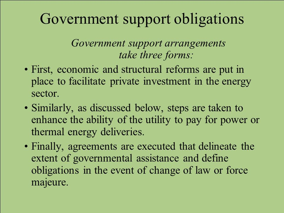Government support obligations