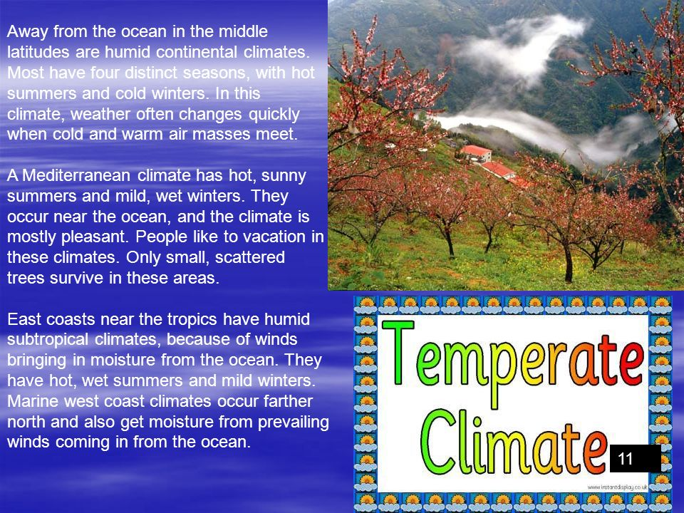 Away from the ocean in the middle latitudes are humid continental climates. Most have four distinct seasons, with hot summers and cold winters. In this
