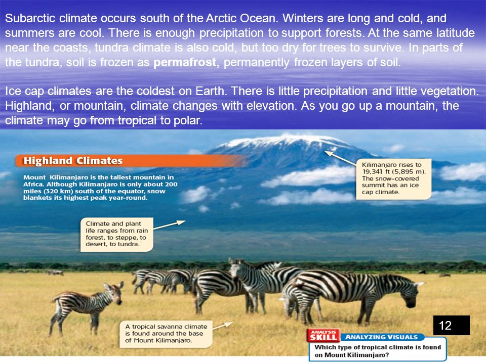 Subarctic climate occurs south of the Arctic Ocean