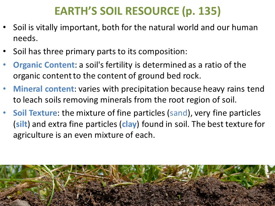 Physical geography unit 3 ecosystems ppt download for Earth soil composition