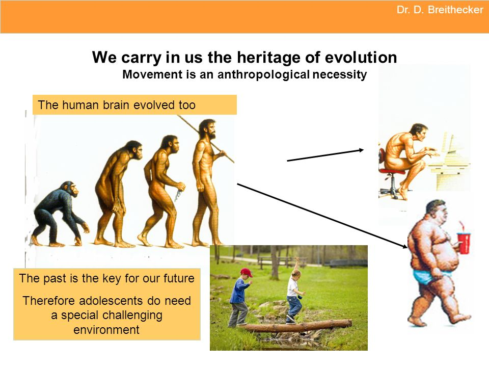 Dr. D. Breithecker We carry in us the heritage of evolution Movement is an anthropological necessity.