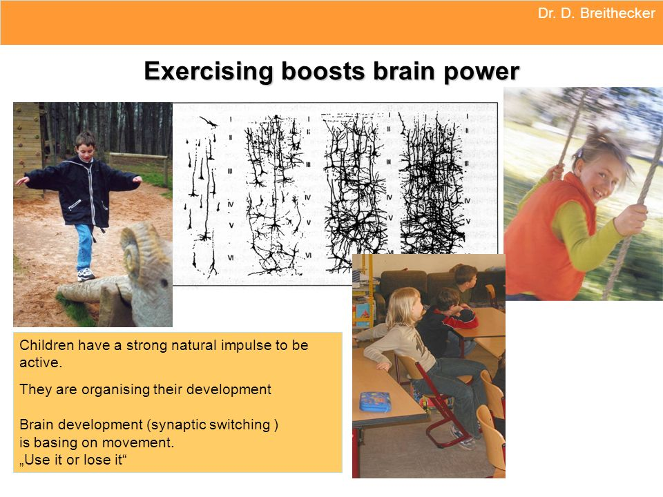 Exercising boosts brain power