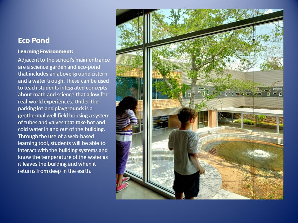 IMAGE Eco Pond Learning Environment: