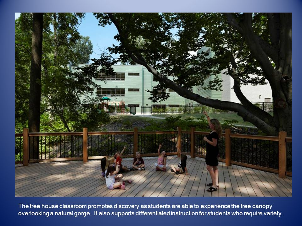 The tree house classroom promotes discovery as students are able to experience the tree canopy overlooking a natural gorge.