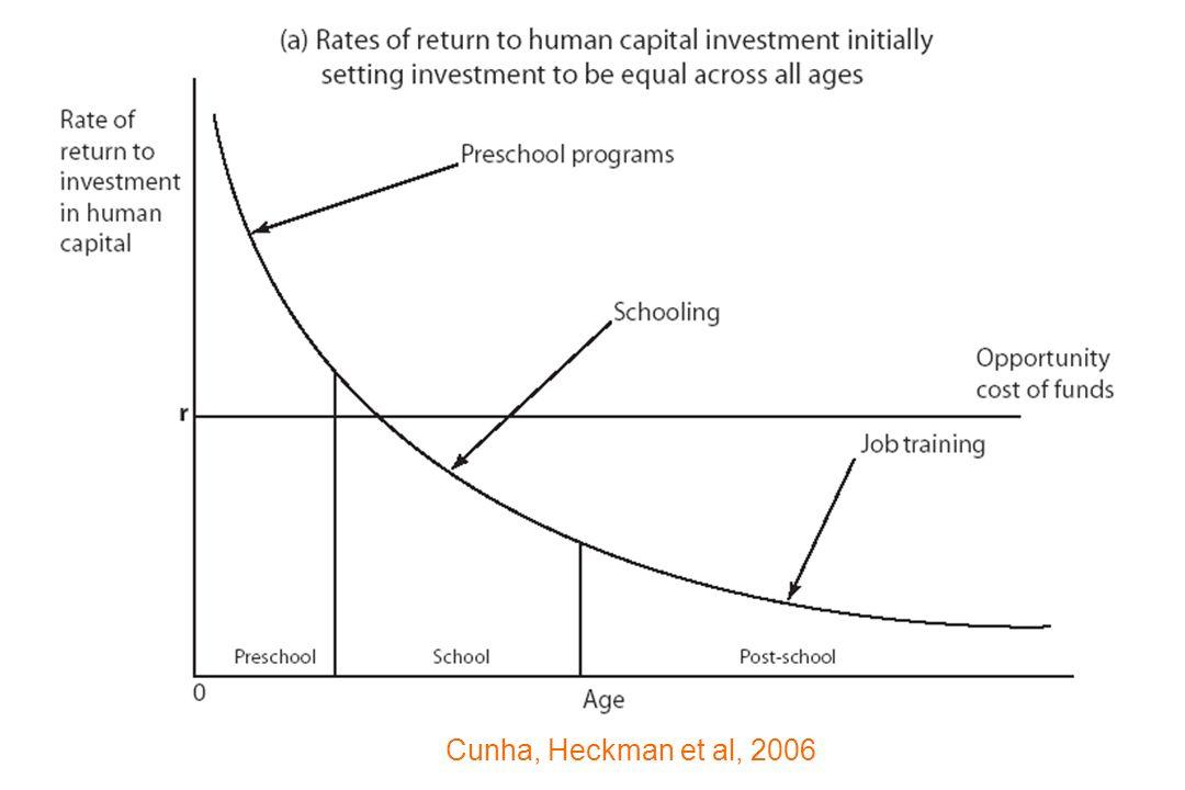 Cunha, Heckman et al, 2006