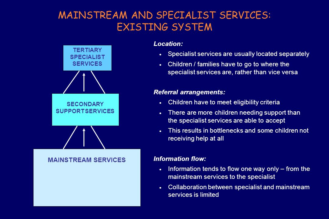 MAINSTREAM AND SPECIALIST SERVICES: EXISTING SYSTEM