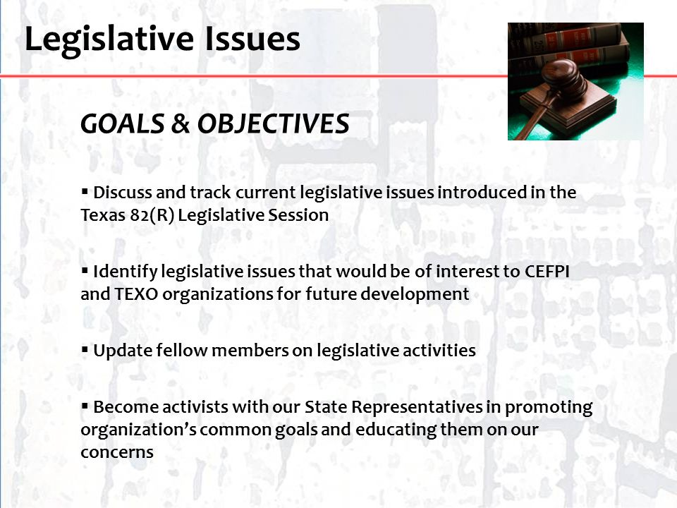 Legislative Issues GOALS & OBJECTIVES