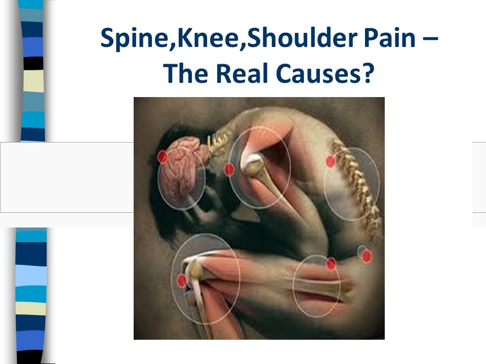 Spine,Knee,Shoulder Pain – The Real Causes