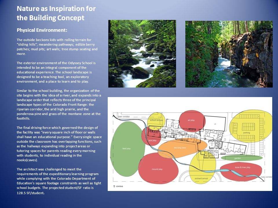 Nature as Inspiration for the Building Concept