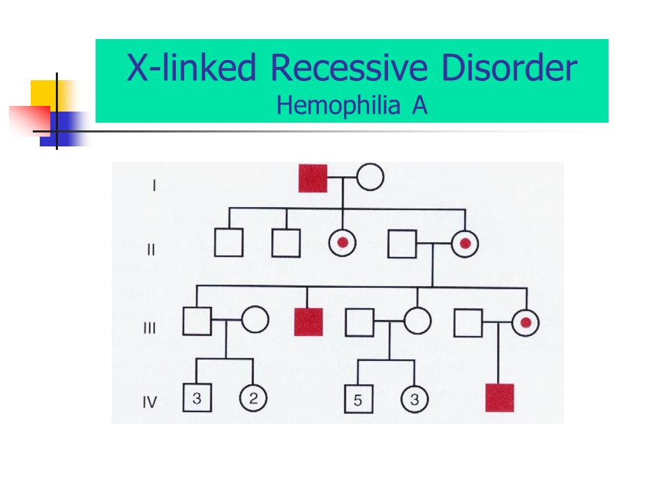 an overview of the recessive disease haemohphilia Hemophilia is an inherited bleeding disorder in which you lack or have low levels of clotting factors making hemophilia an x-linked recessive disease.