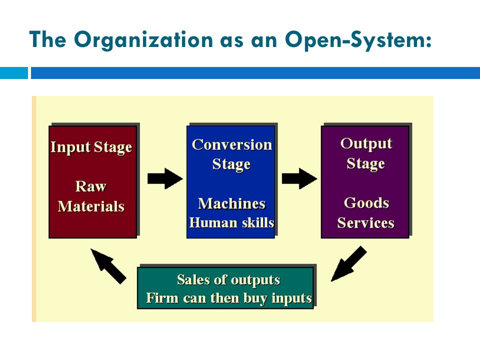 The Organization as an Open-System: