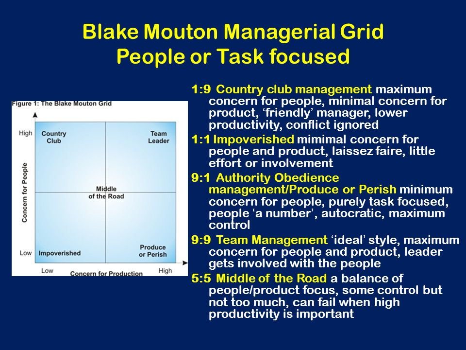 Blake Mouton Managerial Grid People or Task focused
