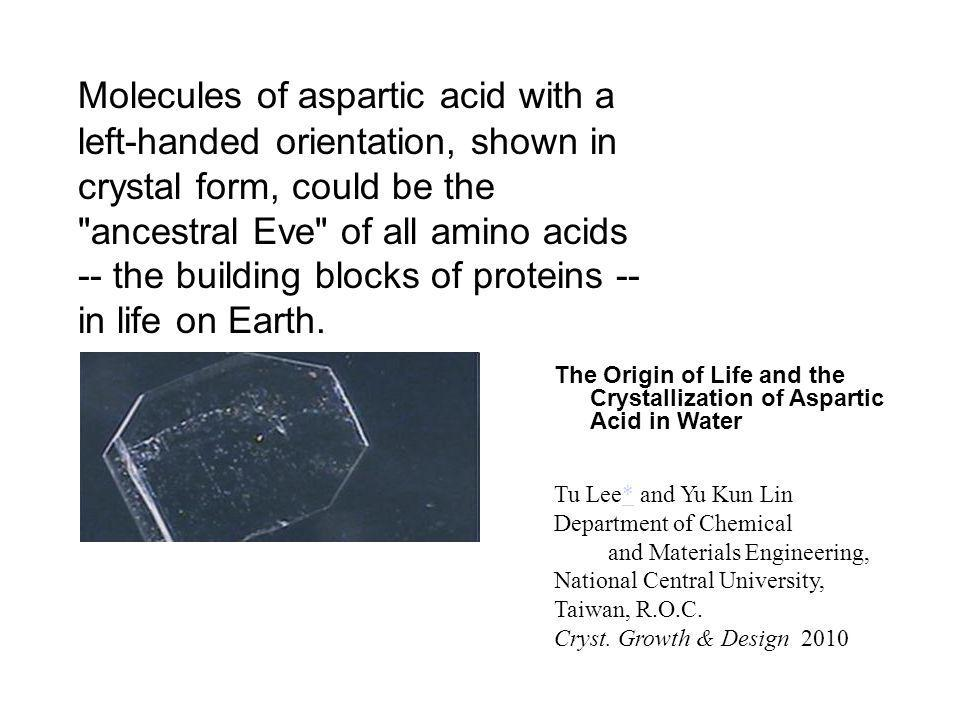 Molecules of aspartic acid with a left-handed orientation, shown in crystal form, could be the ancestral Eve of all amino acids -- the building blocks of proteins -- in life on Earth.