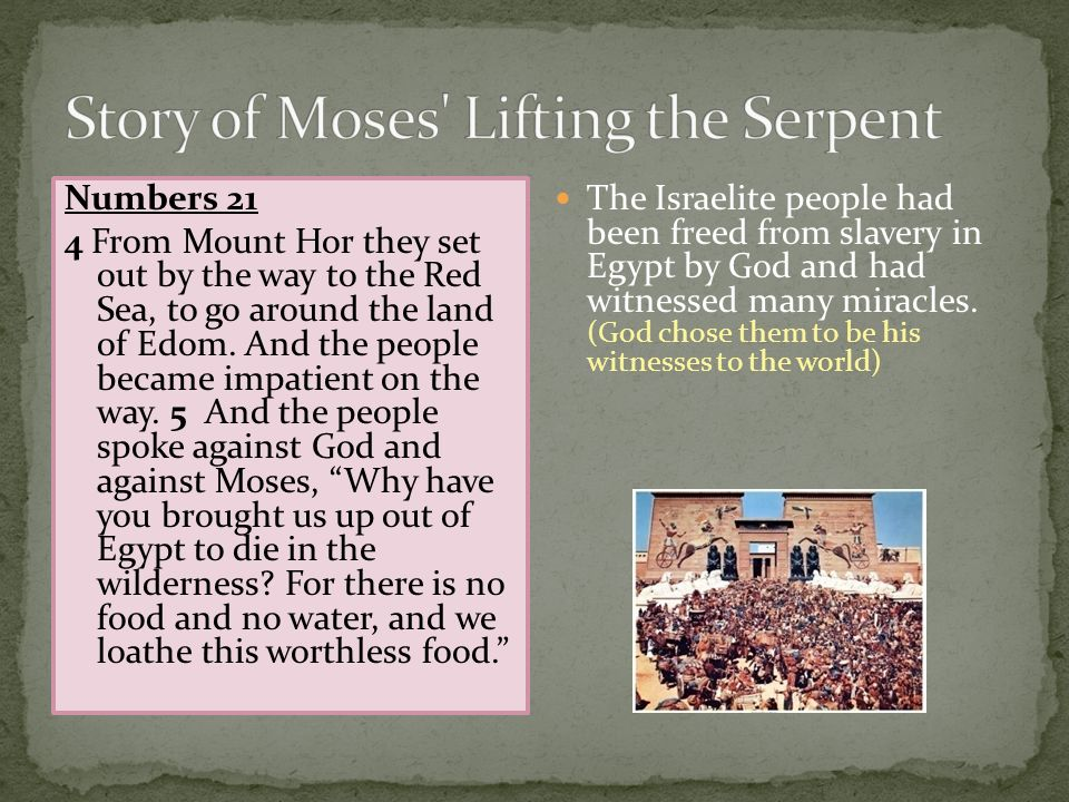Story of Moses Lifting the Serpent
