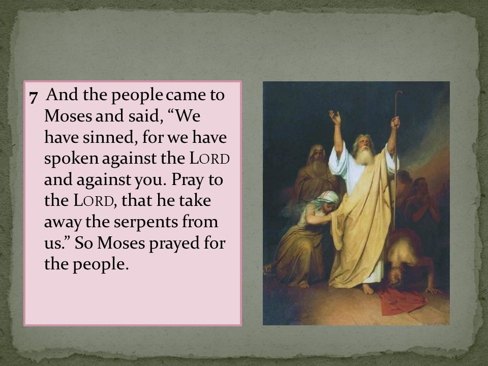 7 And the people came to Moses and said, We have sinned, for we have spoken against the Lord and against you.