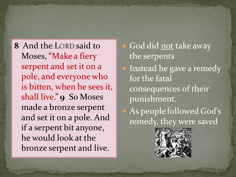 8 And the Lord said to Moses, Make a fiery serpent and set it on a pole, and everyone who is bitten, when he sees it, shall live. 9 So Moses made a bronze serpent and set it on a pole. And if a serpent bit anyone, he would look at the bronze serpent and live.