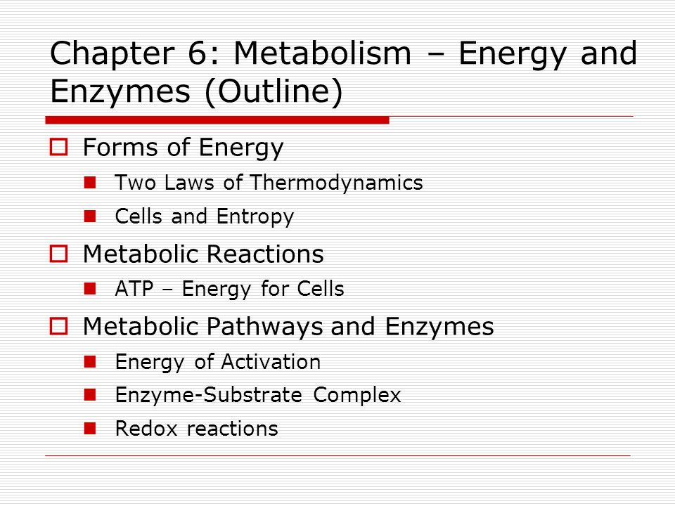metabolism outline Preparatory work for this outline to the guidance document for the  implementation  route of exposure, toxicokinetic and metabolism studies.
