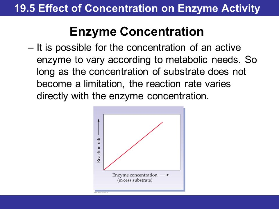 the effect of enzyme and substrate concentration on a reaction rate The effect of enzyme concentration on the rate of reaction abstract we conducted an experiment to see how the concentration of enzymes effects the rate of.