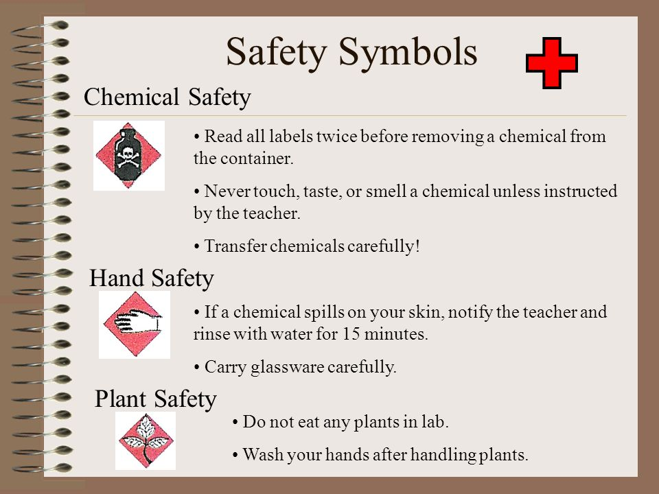 Safety In The Science Lab Ppt Video Online Download
