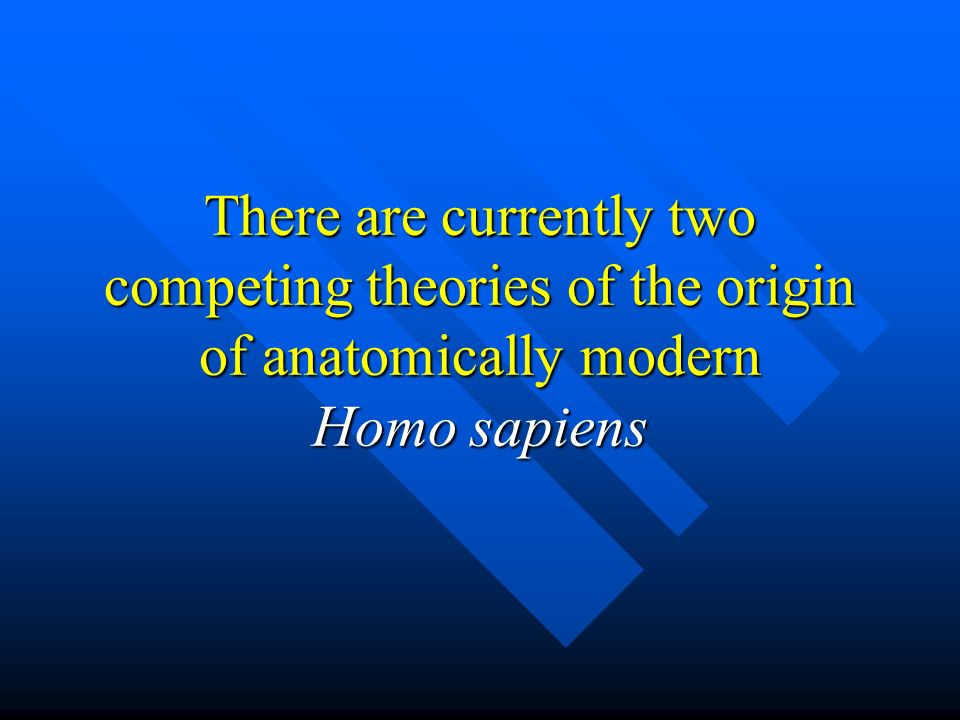 the origin of anatomically modern essay Anatomically modern humans (amh) are one of the over 400 different species that are of the order primates, and so share a group of common features that evolved originally as adaptations for arboreal lifestyles, that discriminate the primates from other mammals.