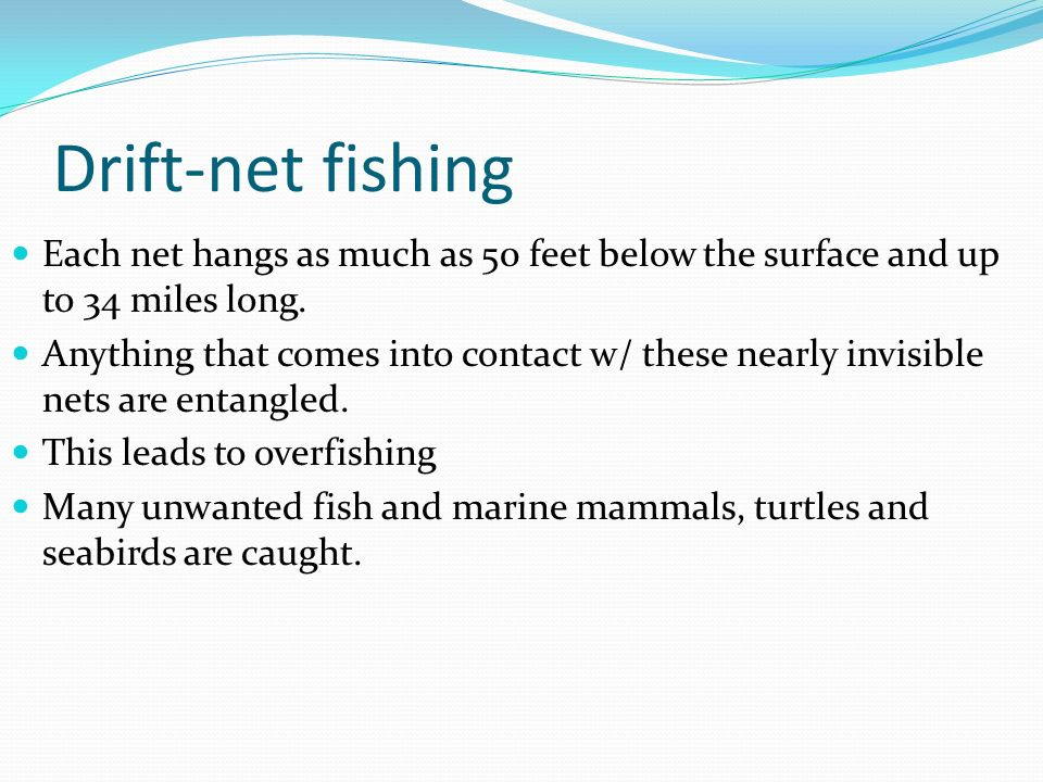 Aquatic ecology ppt video online download for Drift net fishing
