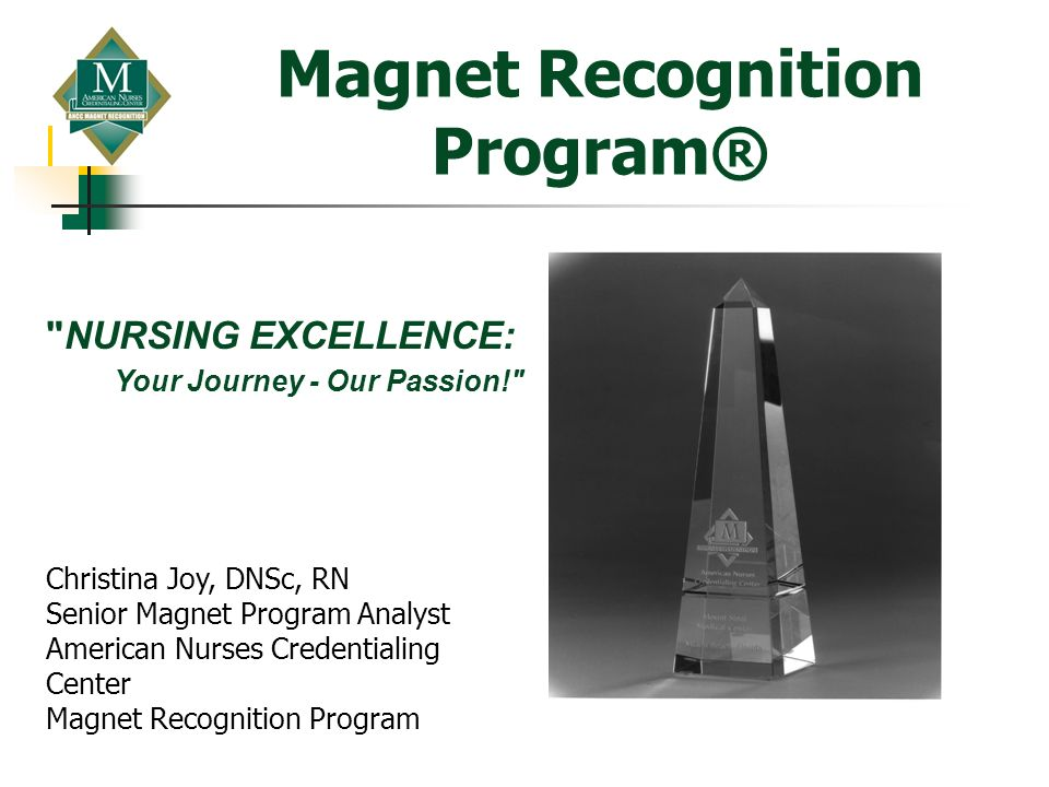 Magnet Recognition Program®