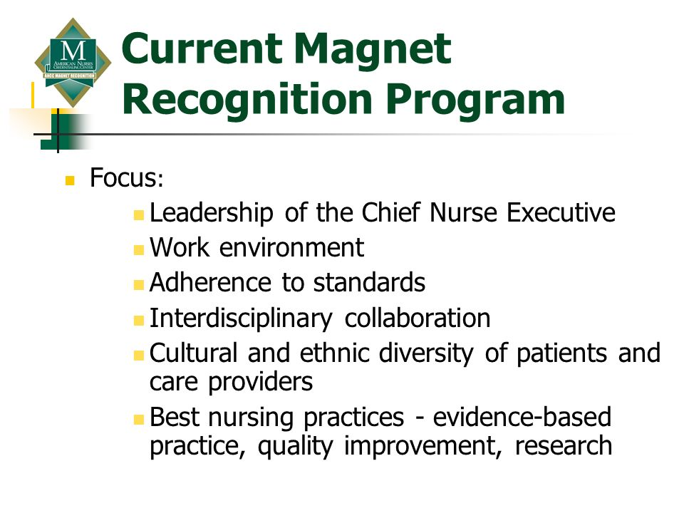 Current Magnet Recognition Program