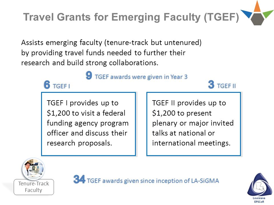 Travel Grants for Emerging Faculty (TGEF)