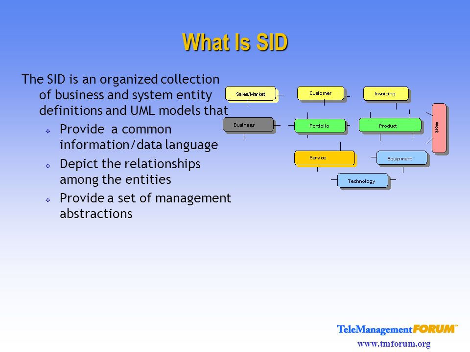 What Is SID The SID is an organized collection of business and system entity definitions and UML models that.