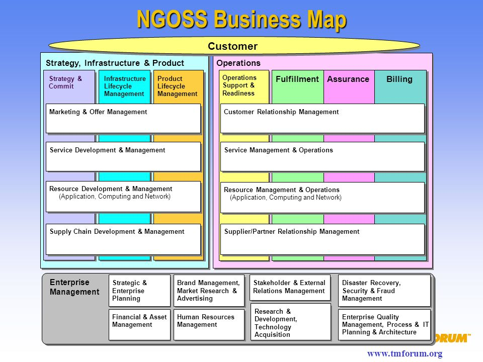 NGOSS Business Map Customer Strategy, Infrastructure & Product