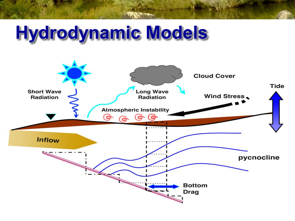 Hydrodynamic Models