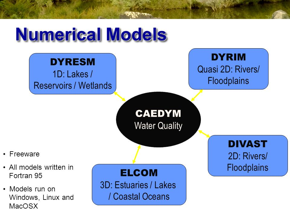 Numerical Models DYRIM DYRESM Quasi 2D: Rivers/ Floodplains
