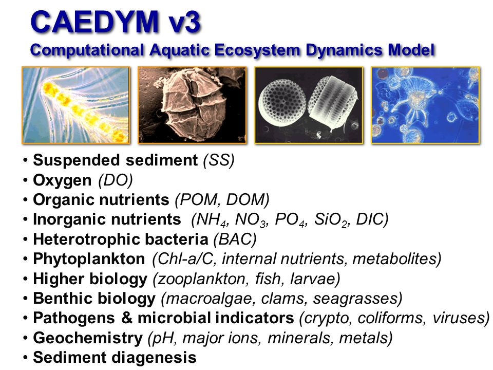 CAEDYM v3 Computational Aquatic Ecosystem Dynamics Model