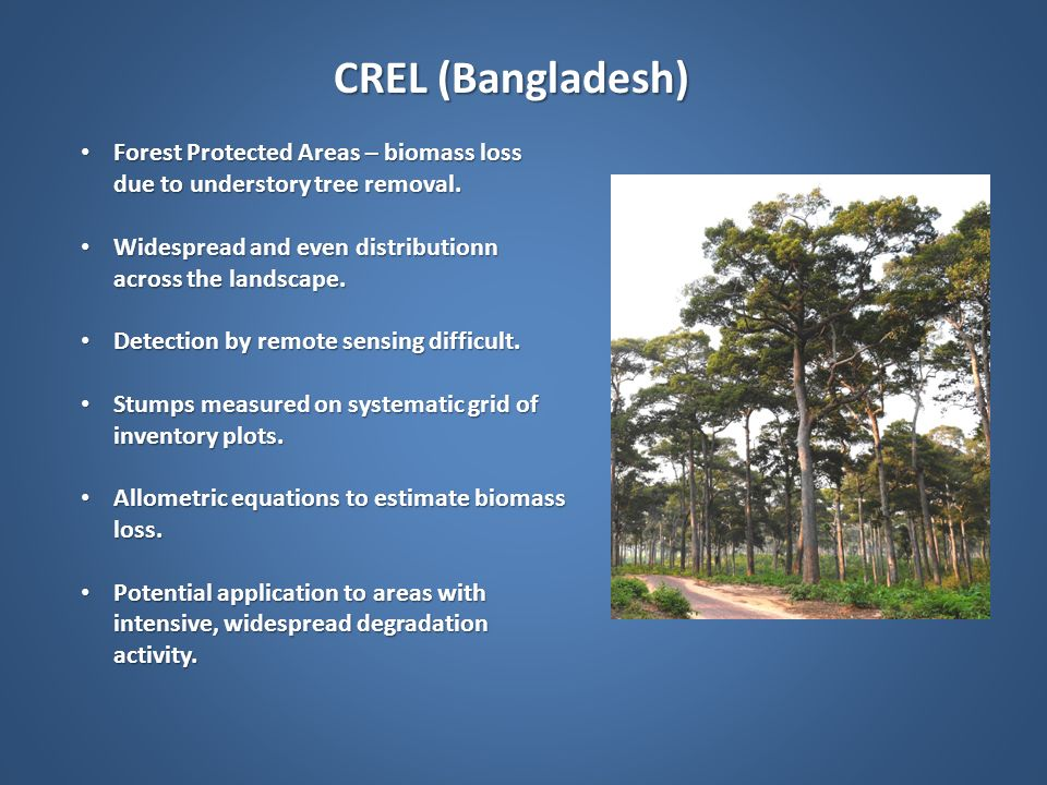 CREL (Bangladesh) Forest Protected Areas – biomass loss due to understory tree removal. Widespread and even distributionn across the landscape.