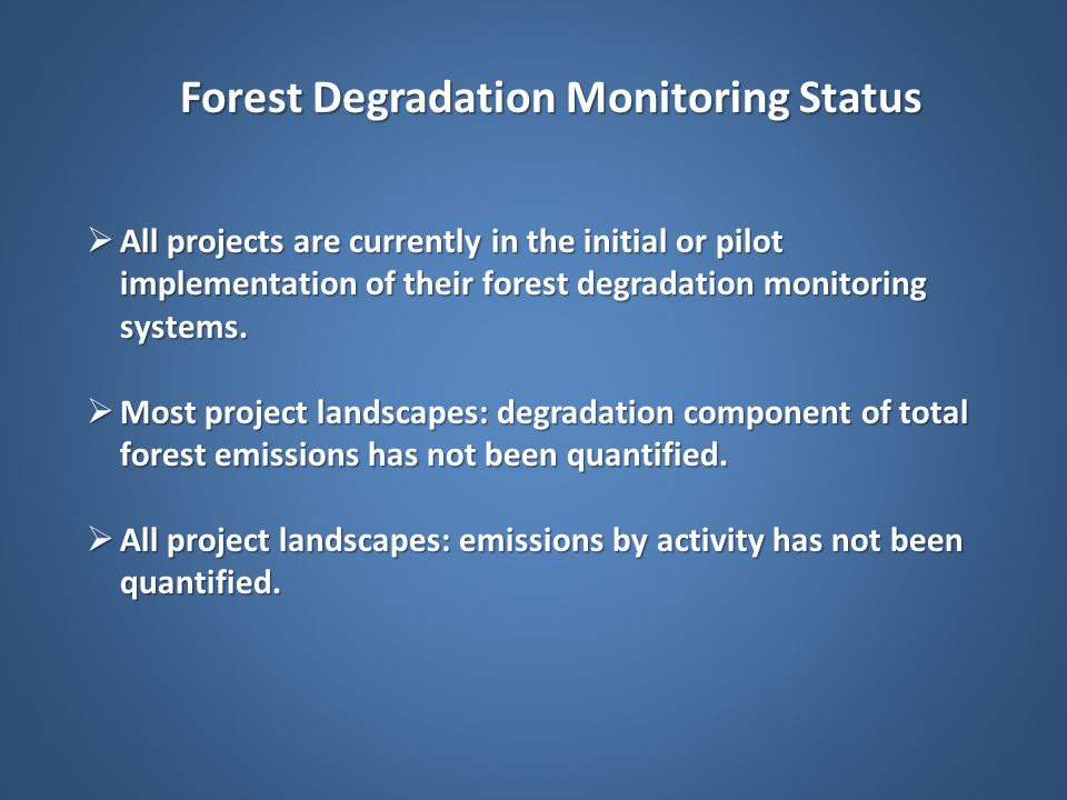 Forest Degradation Monitoring Status